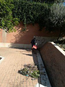 Pulizia e taglio dell'erba